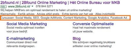 Extensies voor website-informatie