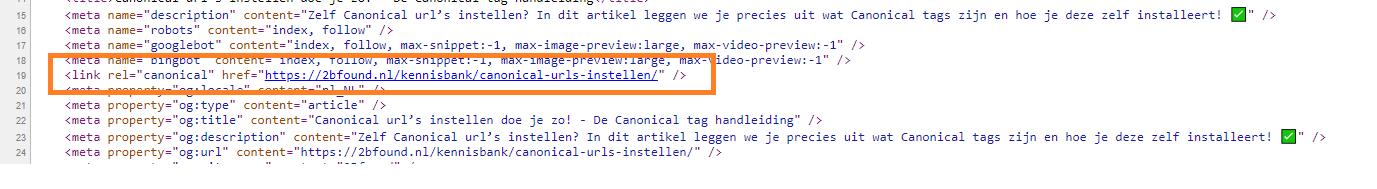 zo ziet een canonical URL tag eruit