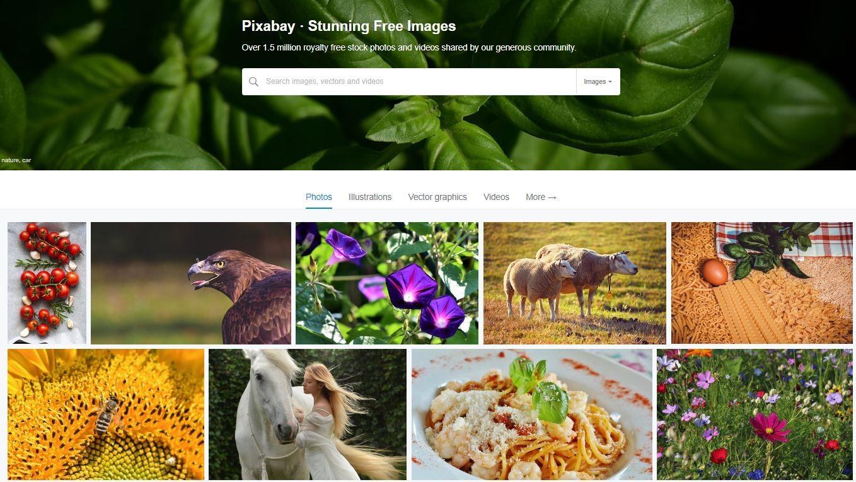 gratis rechtenvrije foto's op Pixabay